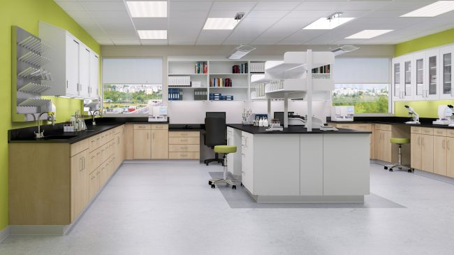 Laboratory using Group LaCasse NeoCase Modular Casework